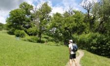 sapore d'autunno e castagne - settimana di camminate tra le Dolomiti