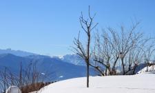 Ski- und Almenadvent  - Bergbahnen inklusive