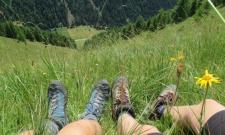 Andar per malghe sulle Dolomiti - settimana con gusto